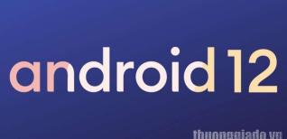 Android 12 hiện đã chính thức ra mắt trong AOSP, những điện thoại thông minh nào sẽ nhận được bản cập nhật đầu tiên?