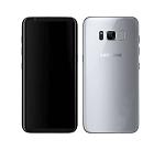 S8 (G950)