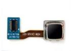 TrackBall BlackBerry 8520
