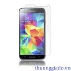 Miếng dán màn hình Samsung Galaxy S5 Screen Protector