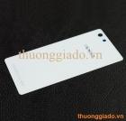 Miếng kính mặt lưng/ Nắp lưng/ Nắp đậy pin OPPO R1 - OPPO R829 Back Cover