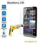 Miếng dán kính cường lực Blackberry Z30 Tempered Glass Screen Protector