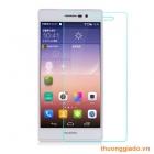 Miếng dán kính cường lực Huawei Ascend P7/ Huawei P7 Tempered Glass Screen Protector
