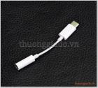 Giắc chuyển đổi tai nghe Apple USB-C sang 3.5 mm (hàng zin theo máy),N975, N970