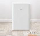 Máy hút ẩm thông minh Xiaomi WIDETECH 12L (kết nối Mi home)